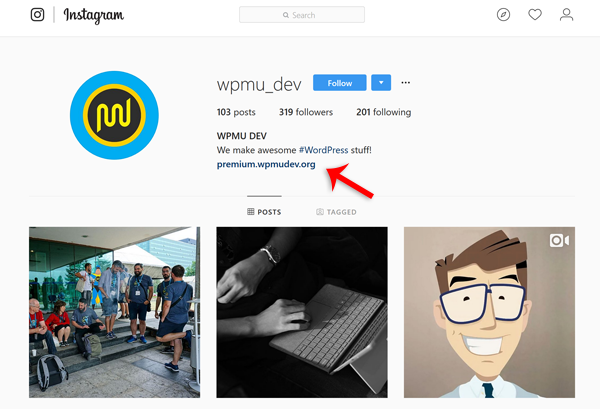 How to Use Instagram To Grow Your Business and Win More Web Design Clients
