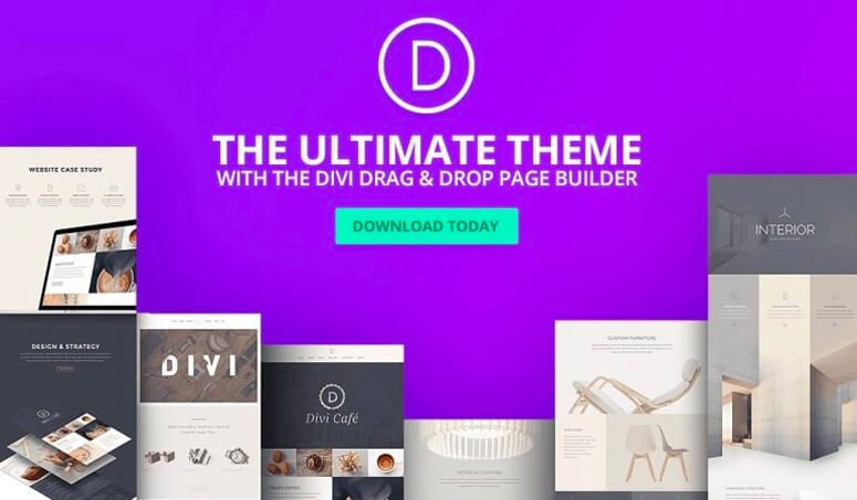 The ULTIMATE Search For The Best WordPress Themes 2018